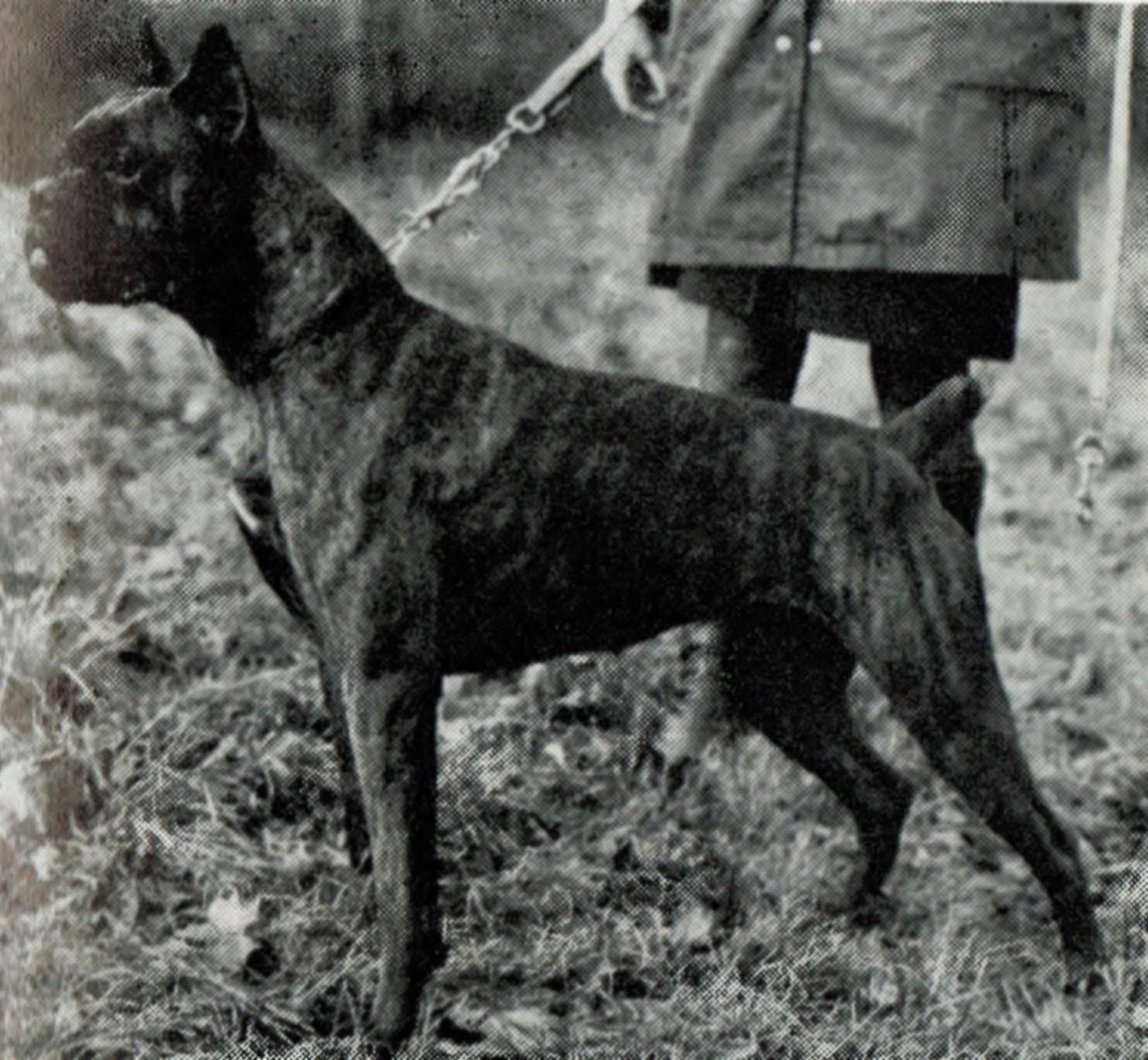 Bianka v. Uhlenhof